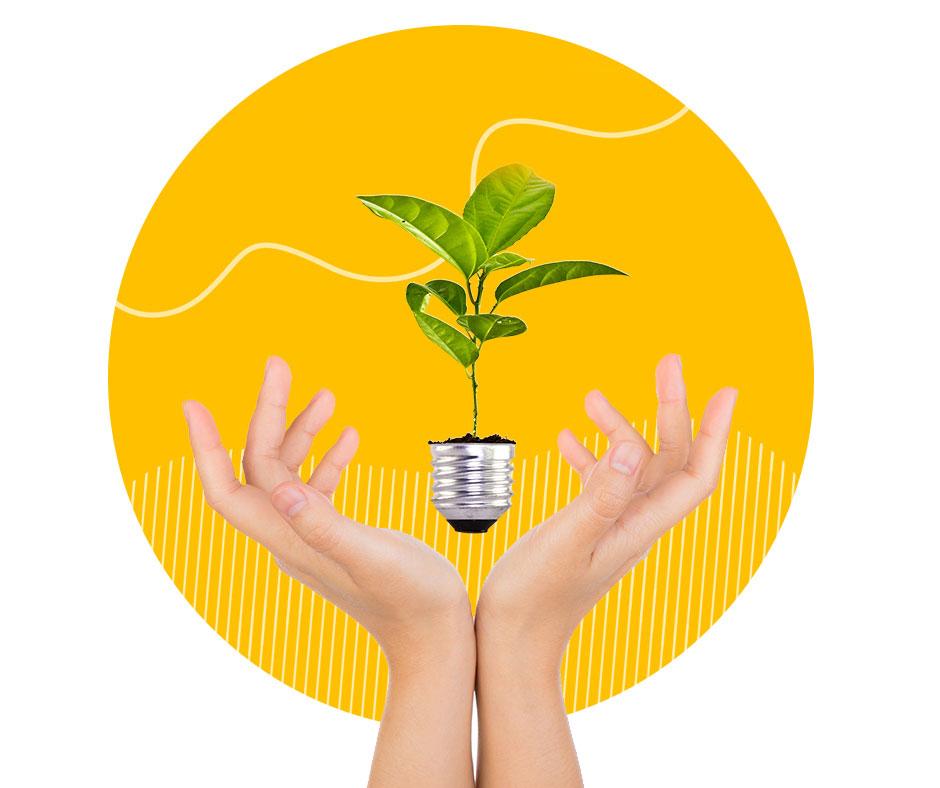 Festival della Sostenibilità 2019: scopri come diventare più green grazie a Ned!